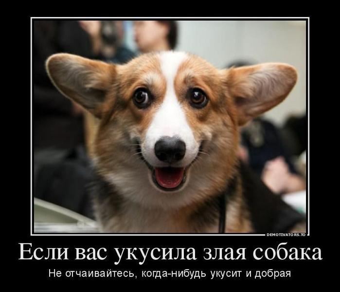 фраза... трахается и говорит по телефону наш Цска Московский Спартак