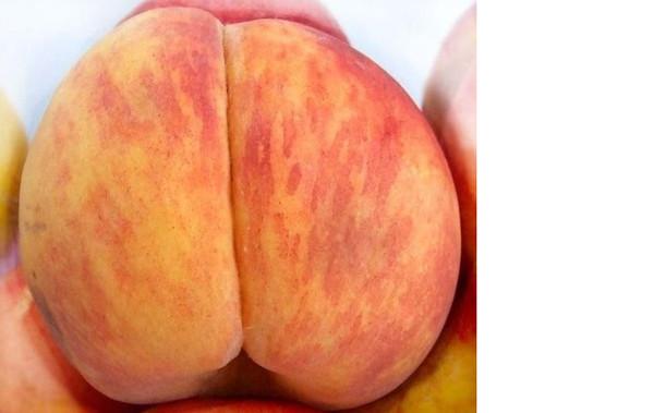Какой фрукт похож на вагину фото 691-679