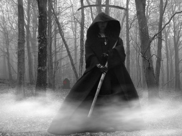 К чему сниться белая смерть