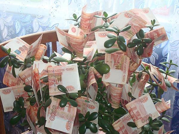 где найти деньги на свадьбу расчет