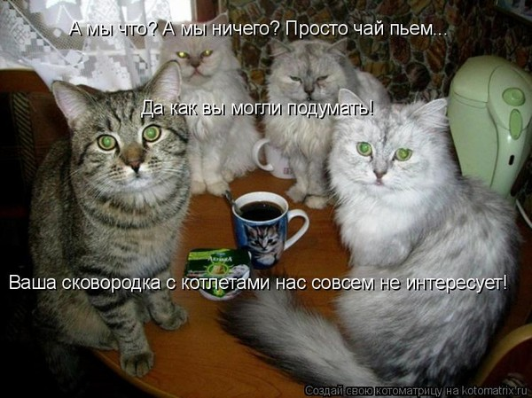 Пришла в гости на чай, а ушла затраханная двумя мужчинами