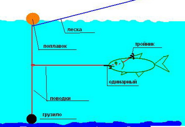 Ответы@Mail.Ru: Ловля на живца