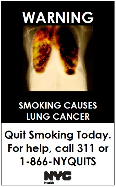 essays smoking effects The second-hand effects of smoking on pets has been well documented like in people, exposure to second-hand smoke increases the risk of cancer and introduces tar and other harmful particulates.