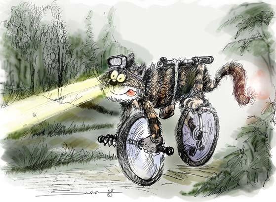 День велосипедиста открытки