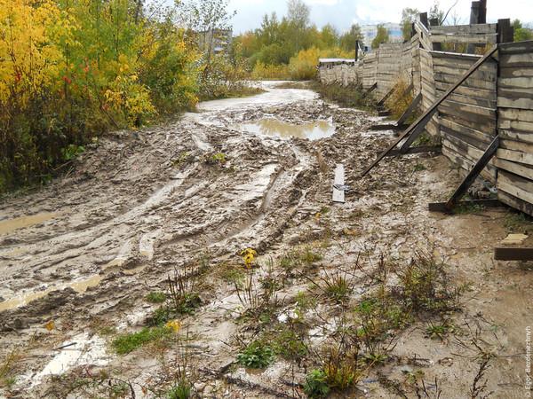 Цими вихідними на Прикарпатті очікується різке погіршення погодних умов
