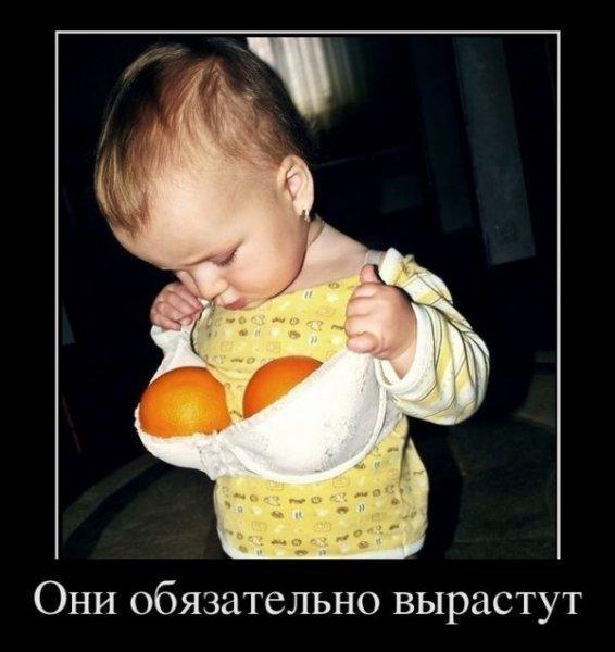Ответы Mail.ru: А пАчиму Чебурашка спал в ящике с апельсинами?