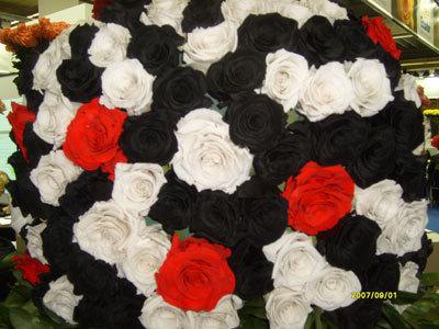 Какие цвета роз бывают