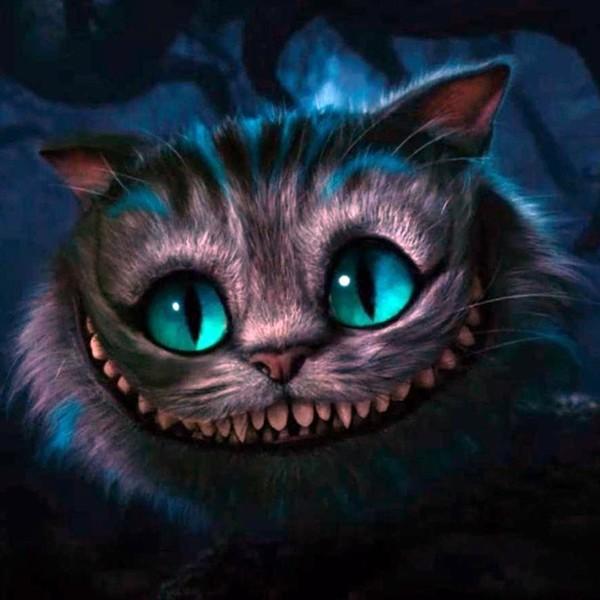Чеширский кот загадки