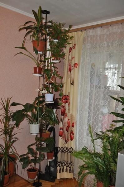 Стойка распорка пол потолок для цветов