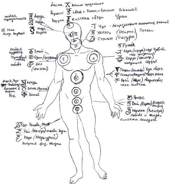 Как у славян назывались части тела