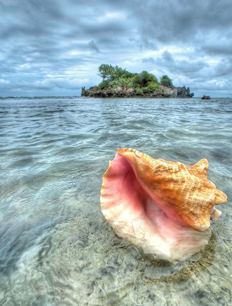 скачать торрент шум моря - фото 9