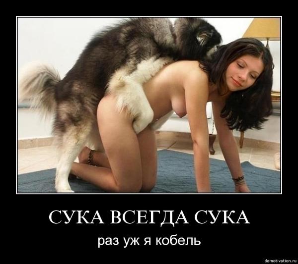 собака ебет девушку Секс порно хаб HD видео