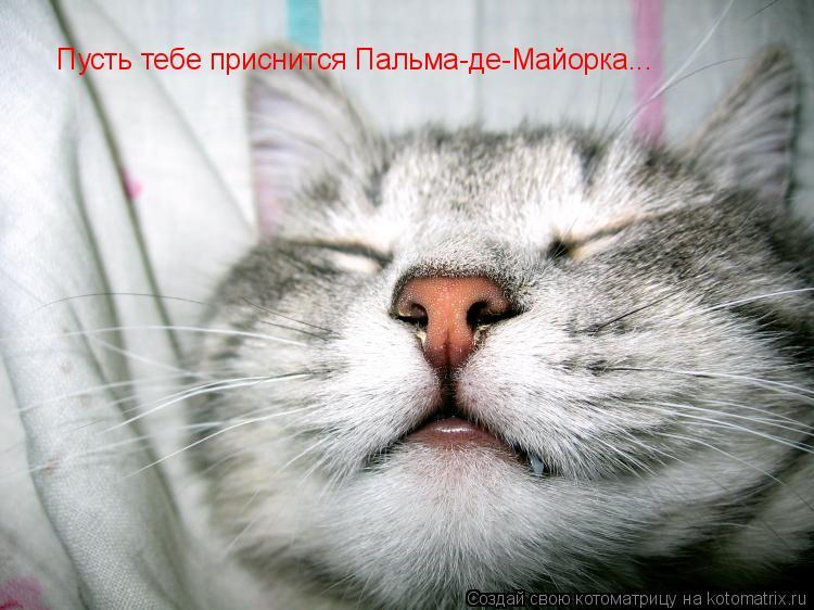Исполнители онлайн русская зарубежная радио контакты.