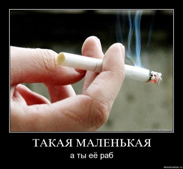 Смысл картинки с маленьким ребенком с нимбом курящего сигарету и пьющего, картинки для