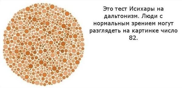 картинки на зрение что ты видишь