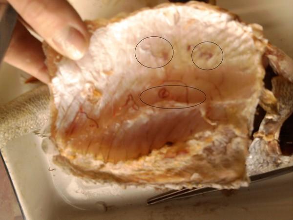 Например, глисты в красной рыбе могут вызвать опасное заболевание нанофиетоз, которое характеризуется тяжелой формой диареи, тошнотой.