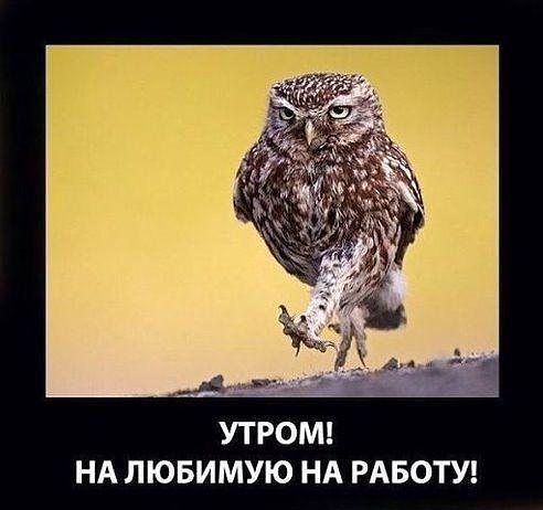 секонд картинки утром на работу всей России