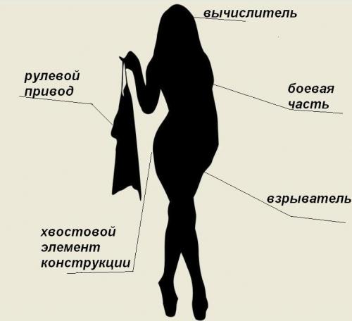 Секси девушки вектор слово