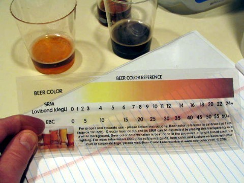 beer classification paper