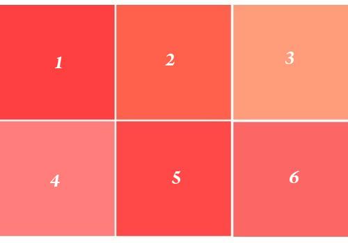 какой цвет коралловый фото