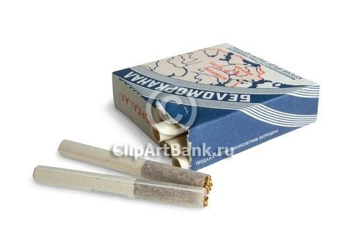 купить беломорканал сигареты спб купить