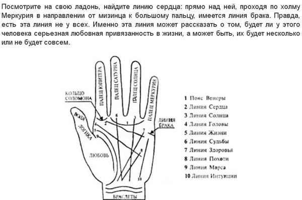 линии брака на руке значение в картинках ведь две