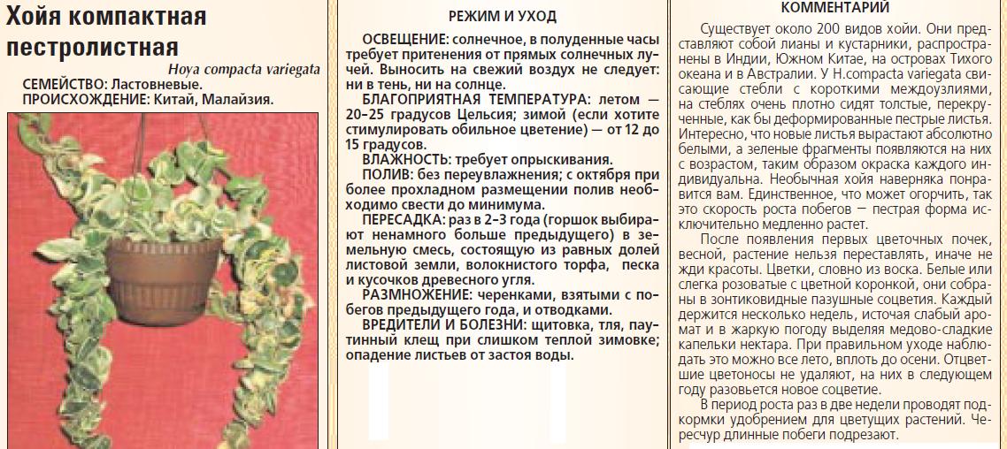 статьи о растениях из  газет и журналов - Страница 7 Ee846022578e93f1e4f3d7e11c932003_s-2857