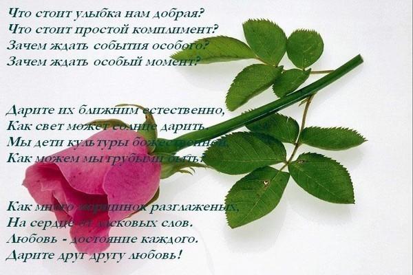 seksualnie-komplimenti-devushkam-volosatie-pizdi-ebutsya-krupnim-planom