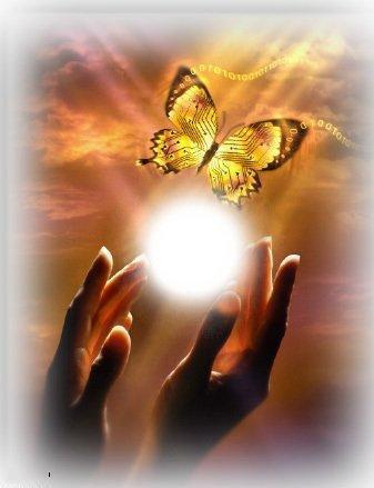 бабочка в руках картинка