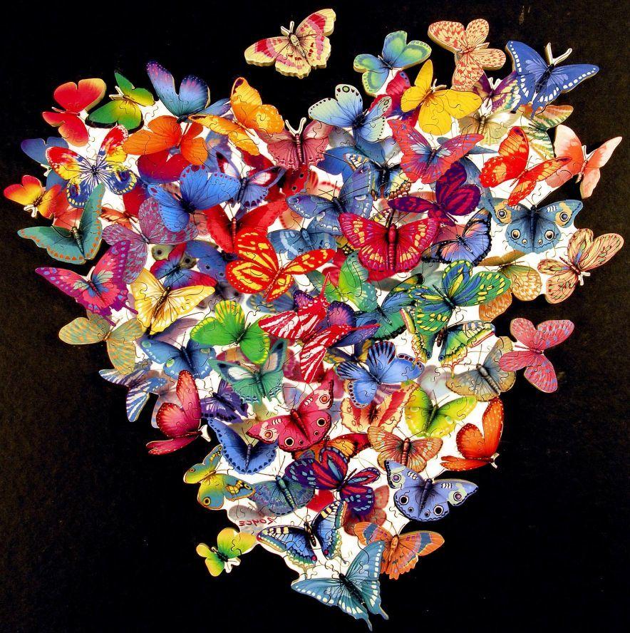 Бабочки в животе картинки, открытка днем