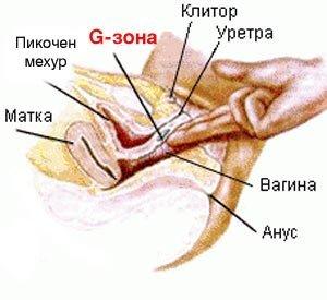 Подписался блог! проститутки в тольятти дешевые на выезд так бывает