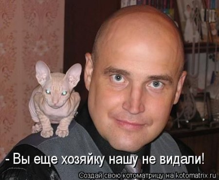 стрижка под котовского фото