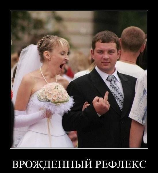 Примета на новом месте приснись жених невесте