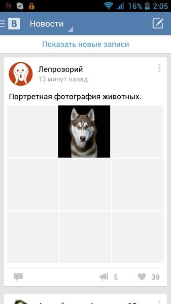 Ответы Mail Ru: Не загружаются фотографии в контакте