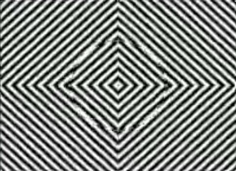 Иллюзии И Галлюцинации Шпаргалки