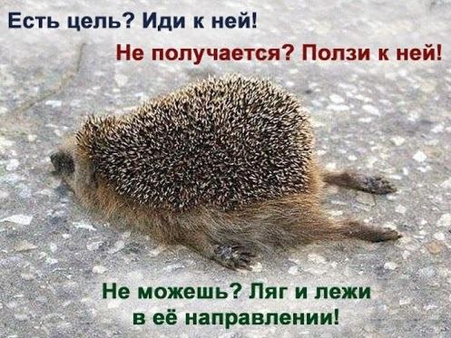 https://otvet.imgsmail.ru/download/fab6a22af2657d60d8382a1d4d7ea671_i-455.jpg