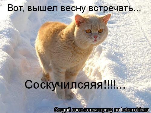 https://otvet.imgsmail.ru/download/fadb8b5eb2d9bbafc323c73cce1a0151_i-2783.jpg