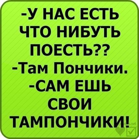 fd066648551195f41d11683e35d43797_i-2657.