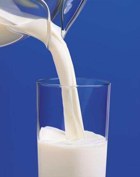 каковы главные процессы в молочном скотоводстве связанные с созданием молока