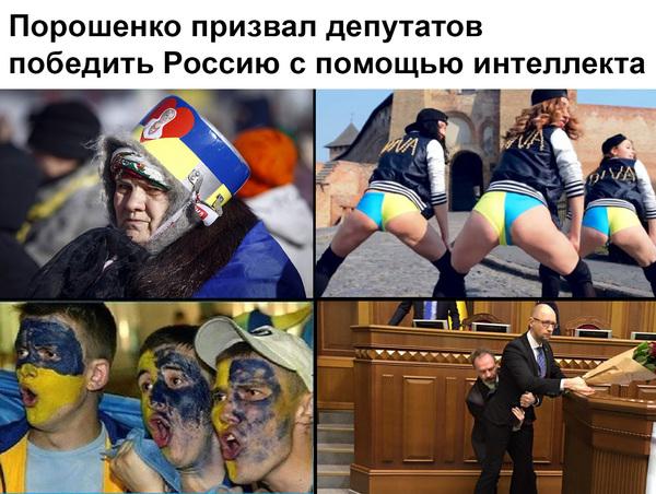 https://otvet.imgsmail.ru/download/u_127440cb8ef2b6797524bb87236ccd11_800.jpg