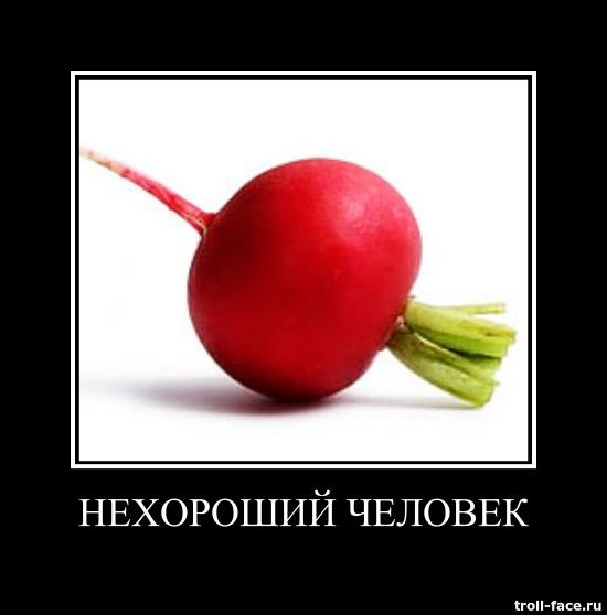 Image result for редиска нехороший человек