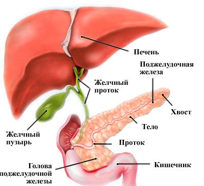 Что есть при билиарном панкреатите
