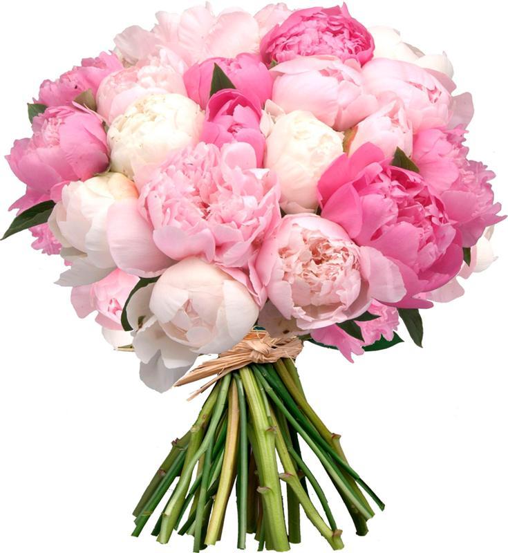 Букеты цветов за 1000 1500 — photo 9