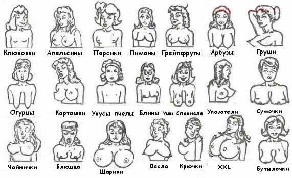 Красивое женская грудь, садомазо шлюхи госпожа