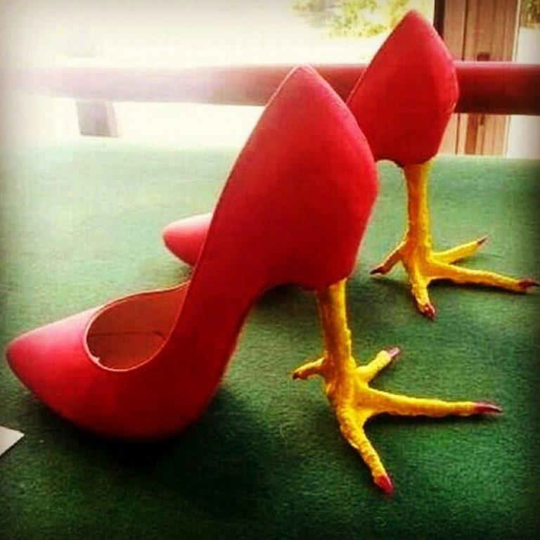 Смешные туфли женские картинки