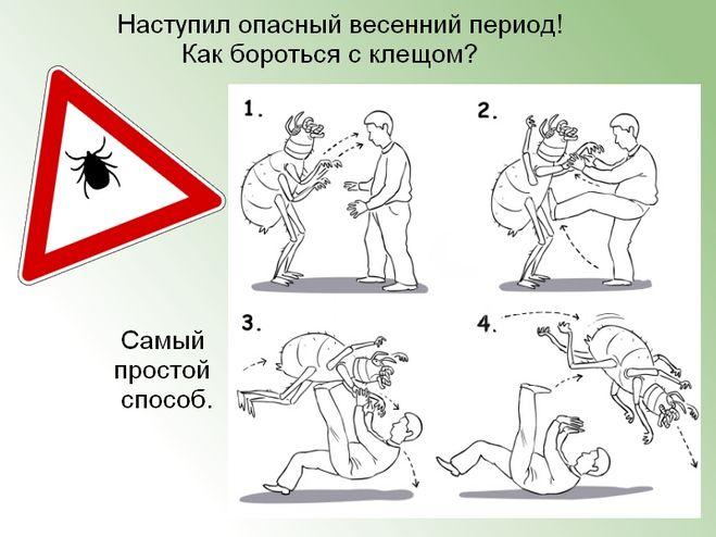 Прикольные картинки по борьбе с клещами