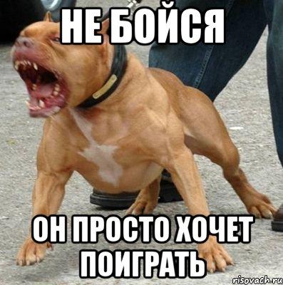 https://otvet.imgsmail.ru/download/u_48f4ae464095deebe9a81876123bd234_800.jpg