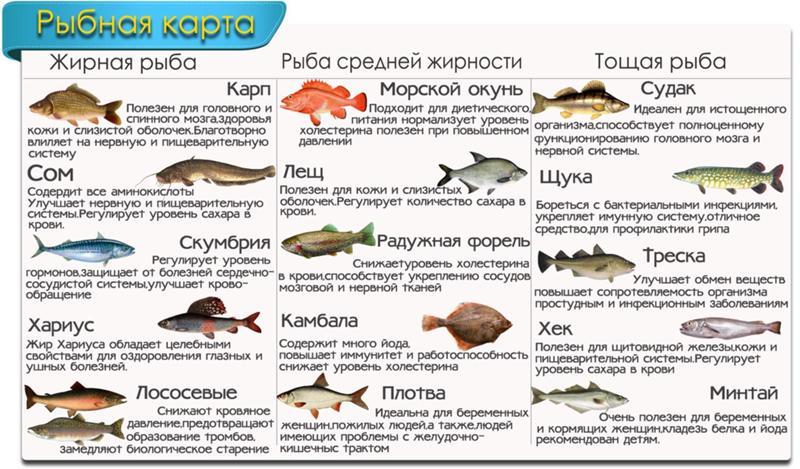 Какая рыба полезнее при диете
