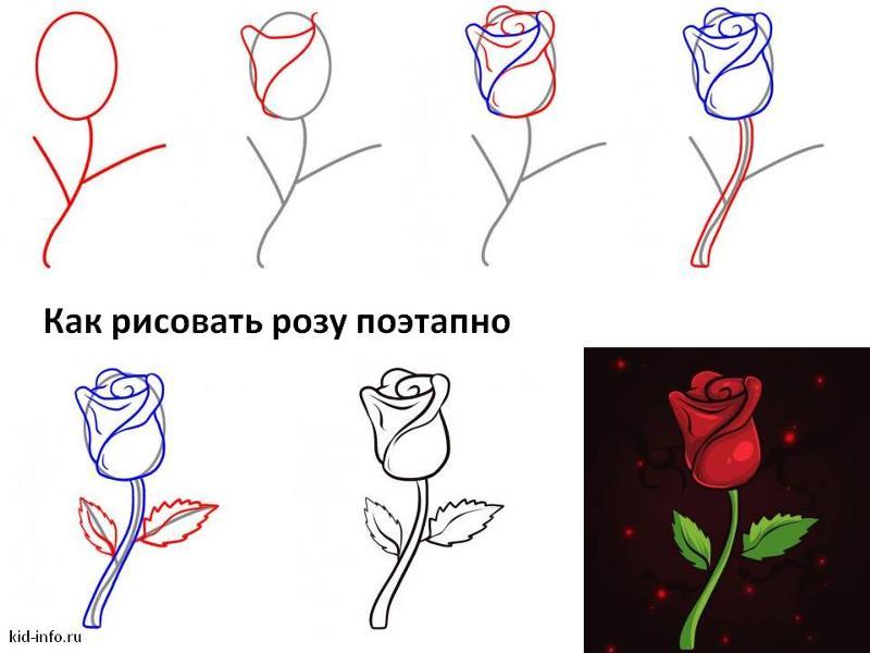 заря картинки роза как нарисовать легкостью предает свою
