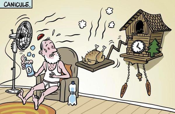 Картинки про жару прикольные карикатуры, открытка программисту днем